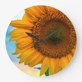 Yellow Sunflowers Sun Flower Photo Time Clock