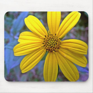 Yellow Sunroot Wildflowers Mouse Pads