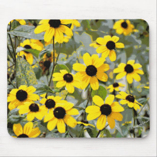 Yellow Sunshine Wildflowers Flowers Mouse Pad