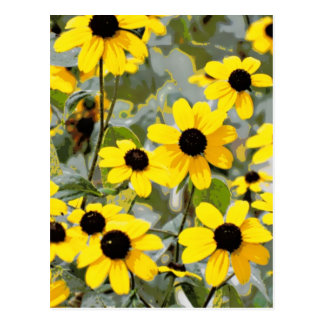 Yellow Sunshine Wildflowers Flowers Post Cards