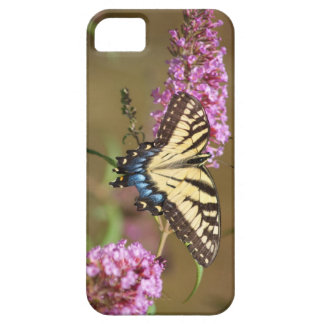 Yellow Swallow Butterfly iPhone 5 Cases