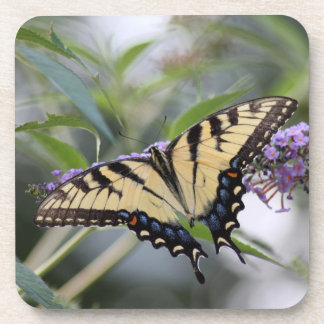 Yellow Swallow Tail Butterfly Coasters