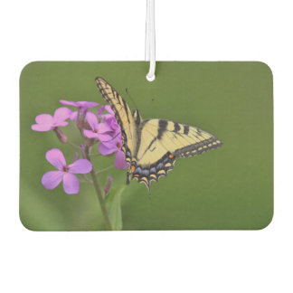 Yellow swallowtail butterfly and wildflowers car air freshener