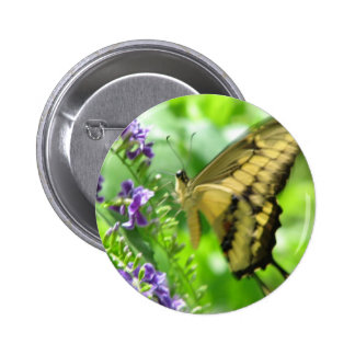 Yellow Swallowtail Butterfly Round Button