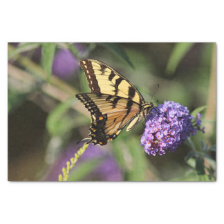 Yellow swallowtail butterfly tissue paper