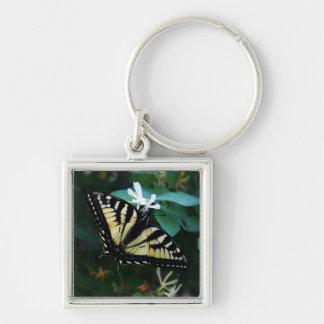 Yellow Swallowtail Key Ring