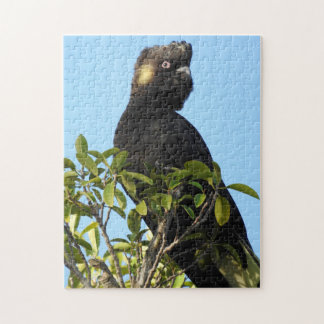 Yellow-tailed Black Cockatoo Jigsaw Puzzle