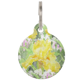 Yellow Tall Bearded Iris Watercolor Pet Name Tag