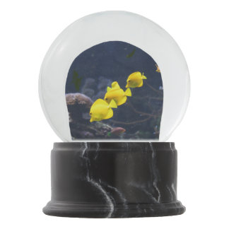 Yellow Tang Fish Snow Globe
