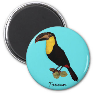 YELLOW THROATED TOUCAN BIRD. TOUCAN ROUND MAGNET