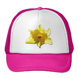 Yellow Trumpet Daffodil 1.0 Cap