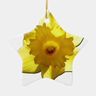 Yellow Trumpet Daffodil 1.0 Ceramic Star Decoration