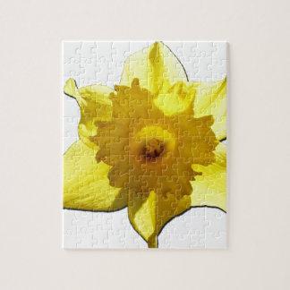 Yellow Trumpet Daffodil 1.0 Jigsaw Puzzle