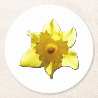 Yellow Trumpet Daffodil 1.0 Round Paper Coaster