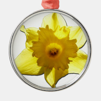 Yellow Trumpet Daffodil 1.0 Silver-Colored Round Decoration