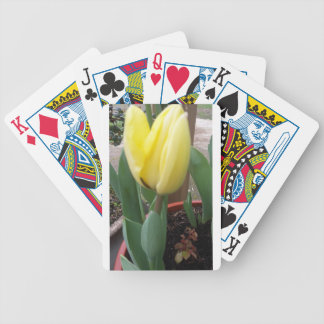 Yellow tulip bicycle playing cards