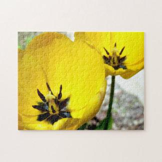 Yellow Tulip Photo Puzzle