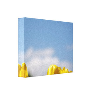 Yellow Tulips Blue Sky Wrapped Canvas Stretched Canvas Print