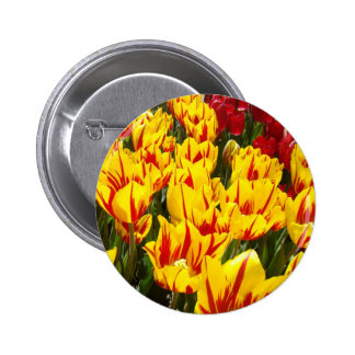 Yellow Tulips buttons Spring Tulip Flowers button