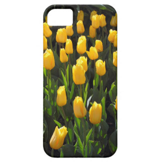Yellow Tulips Case For The iPhone 5