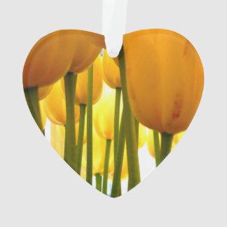 yellow Tulips = happy Tulips