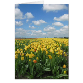 Yellow Tulips Landscape Greeting Card