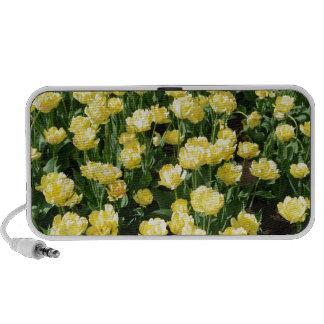 Yellow Tulips PC Speakers