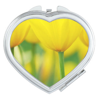 Yellow Tulips with Green Mirror For Makeup