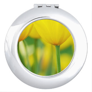 Yellow Tulips with Green Mirrors For Makeup