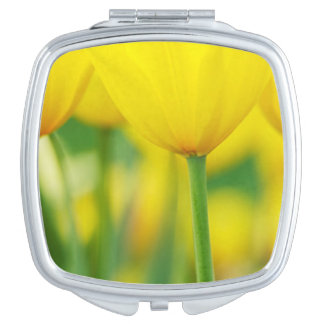 Yellow Tulips with Green Travel Mirrors