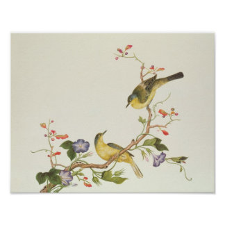Yellow Wagtail with blue head Poster