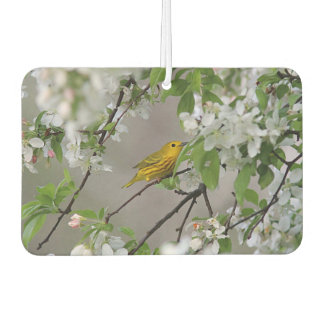 Yellow Warbler and Spring Blossoms Car Air Freshener