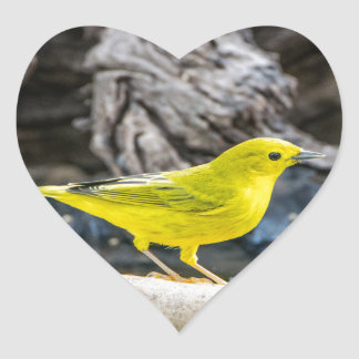 Yellow Warbler Bird Gifts and Accessories Heart Sticker