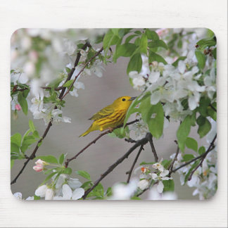 Yellow Warbler Mouse Pad