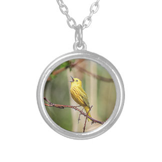 Yellow Warbler Singing Silver Plated Necklace