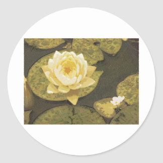 Yellow Water Lily Drawing Round Stickers
