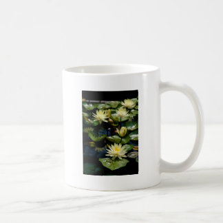 Yellow Waterlily Mug