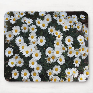 Yellow & white daisies mouse pad