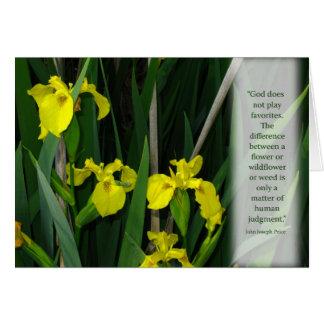 Yellow Wild Irises Card