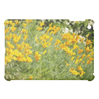 yellow Wild poppies in country lane flowers iPad Mini Covers