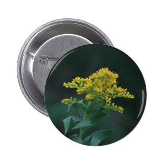 Yellow Wildflower Pinback Buttons