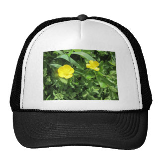 Yellow Wildflower Hat