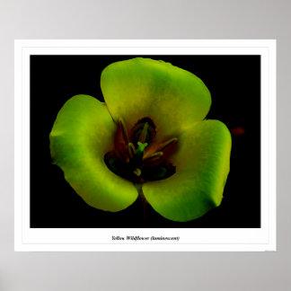 Yellow Wildflower (luminescent) Print