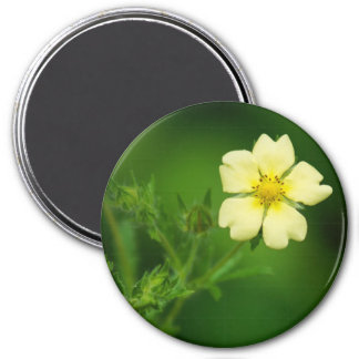 Yellow wildflower 7.5 cm round magnet