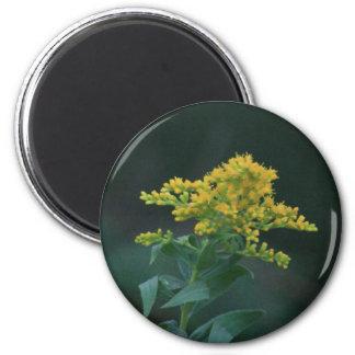 Yellow Wildflower Fridge Magnet