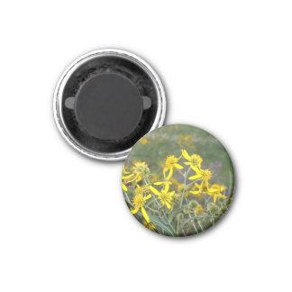 Yellow Wildflower Magnet