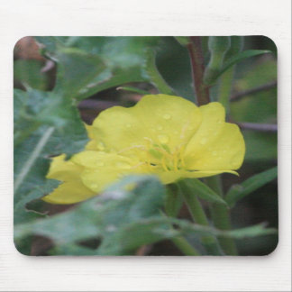 Yellow Wildflower Mousepad