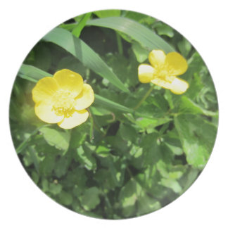 Yellow Wildflower Party Plates