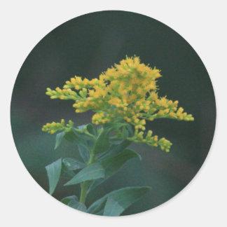 Yellow Wildflower Round Sticker