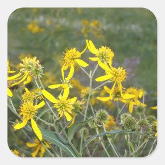 Yellow Wildflower Sticker